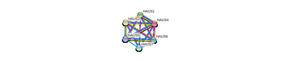http://string-db.org/version_10/api/image/networkList?limit=0&targetmode=proteins&caller_identity=gene_cards&network_flavor=evidence&identifiers=9606.ENSP00000439056%0d%0a9606.ENSP00000369871%0d%0a9606.ENSP00000260372%0d%0a9606.ENSP00000282058%0d%0a9606.ENSP00000206474%0d%0a9606.ENSP00000359239%0d%0a