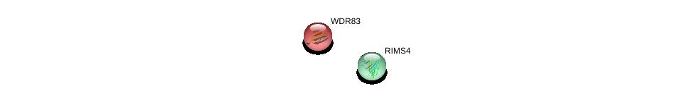 http://string-db.org/version_10/api/image/networkList?limit=0&targetmode=proteins&caller_identity=gene_cards&network_flavor=evidence&identifiers=9606.ENSP00000439287%0d%0a9606.ENSP00000242796%0d%0a