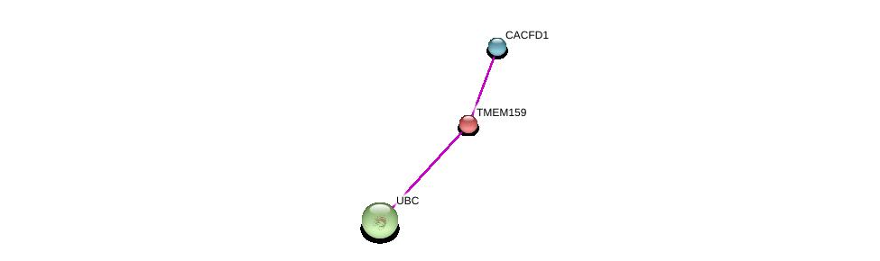 http://string-db.org/version_10/api/image/networkList?limit=0&targetmode=proteins&caller_identity=gene_cards&network_flavor=evidence&identifiers=9606.ENSP00000440832%0d%0a9606.ENSP00000233047%0d%0a9606.ENSP00000344818%0d%0a