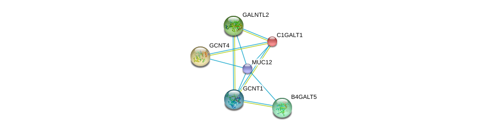 http://string-db.org/version_10/api/image/networkList?limit=0&targetmode=proteins&caller_identity=gene_cards&network_flavor=evidence&identifiers=9606.ENSP00000441929%0d%0a9606.ENSP00000344260%0d%0a9606.ENSP00000317027%0d%0a9606.ENSP00000360776%0d%0a9606.ENSP00000223122%0d%0a9606.ENSP00000365920%0d%0a