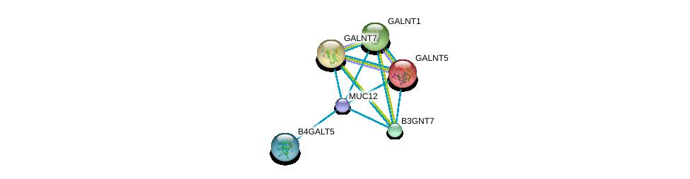 http://string-db.org/version_10/api/image/networkList?limit=0&targetmode=proteins&caller_identity=gene_cards&network_flavor=evidence&identifiers=9606.ENSP00000441929%0d%0a9606.ENSP00000360776%0d%0a9606.ENSP00000259056%0d%0a9606.ENSP00000265000%0d%0a9606.ENSP00000269195%0d%0a9606.ENSP00000287590%0d%0a
