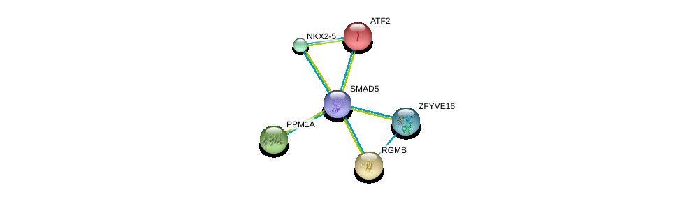 http://string-db.org/version_10/api/image/networkList?limit=0&targetmode=proteins&caller_identity=gene_cards&network_flavor=evidence&identifiers=9606.ENSP00000441954%0d%0a9606.ENSP00000327255%0d%0a9606.ENSP00000327758%0d%0a9606.ENSP00000337159%0d%0a9606.ENSP00000308219%0d%0a9606.ENSP00000264110%0d%0a