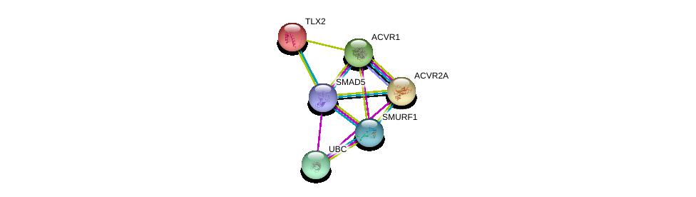 http://string-db.org/version_10/api/image/networkList?limit=0&targetmode=proteins&caller_identity=gene_cards&network_flavor=evidence&identifiers=9606.ENSP00000441954%0d%0a9606.ENSP00000354621%0d%0a9606.ENSP00000344818%0d%0a9606.ENSP00000263640%0d%0a9606.ENSP00000233638%0d%0a9606.ENSP00000241416%0d%0a