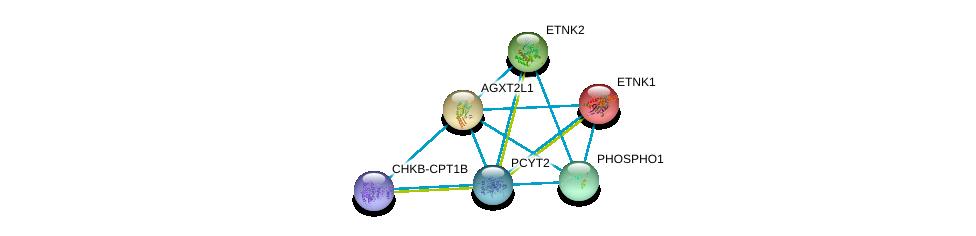 http://string-db.org/version_10/api/image/networkList?limit=0&targetmode=proteins&caller_identity=gene_cards&network_flavor=evidence&identifiers=9606.ENSP00000442050%0d%0a9606.ENSP00000296486%0d%0a9606.ENSP00000356170%0d%0a9606.ENSP00000406909%0d%0a9606.ENSP00000457031%0d%0a9606.ENSP00000266517%0d%0a