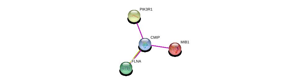 http://string-db.org/version_10/api/image/networkList?limit=0&targetmode=proteins&caller_identity=gene_cards&network_flavor=evidence&identifiers=9606.ENSP00000446100%0d%0a9606.ENSP00000261537%0d%0a9606.ENSP00000274335%0d%0a9606.ENSP00000358866%0d%0a