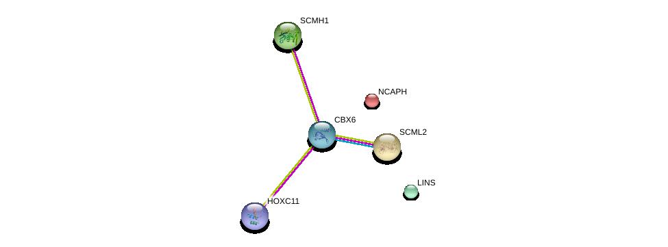 http://string-db.org/version_10/api/image/networkList?limit=0&targetmode=proteins&caller_identity=gene_cards&network_flavor=evidence&identifiers=9606.ENSP00000446680%0d%0a9606.ENSP00000318423%0d%0a9606.ENSP00000240423%0d%0a9606.ENSP00000384490%0d%0a9606.ENSP00000251900%0d%0a9606.ENSP00000318094%0d%0a