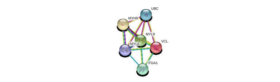 http://string-db.org/version_10/api/image/networkList?limit=0&targetmode=proteins&caller_identity=gene_cards&network_flavor=evidence&identifiers=9606.ENSP00000446714%0d%0a9606.ENSP00000344818%0d%0a9606.ENSP00000216181%0d%0a9606.ENSP00000211998%0d%0a9606.ENSP00000279022%0d%0a9606.ENSP00000282588%0d%0a