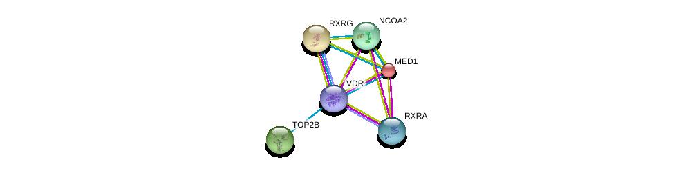 http://string-db.org/version_10/api/image/networkList?limit=0&targetmode=proteins&caller_identity=gene_cards&network_flavor=evidence&identifiers=9606.ENSP00000447173%0d%0a9606.ENSP00000419692%0d%0a9606.ENSP00000396704%0d%0a9606.ENSP00000300651%0d%0a9606.ENSP00000352900%0d%0a9606.ENSP00000399968%0d%0a