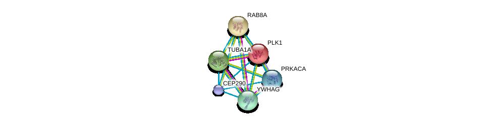http://string-db.org/version_10/api/image/networkList?limit=0&targetmode=proteins&caller_identity=gene_cards&network_flavor=evidence&identifiers=9606.ENSP00000448012%0d%0a9606.ENSP00000300935%0d%0a9606.ENSP00000301071%0d%0a9606.ENSP00000306330%0d%0a9606.ENSP00000309591%0d%0a9606.ENSP00000300093%0d%0a
