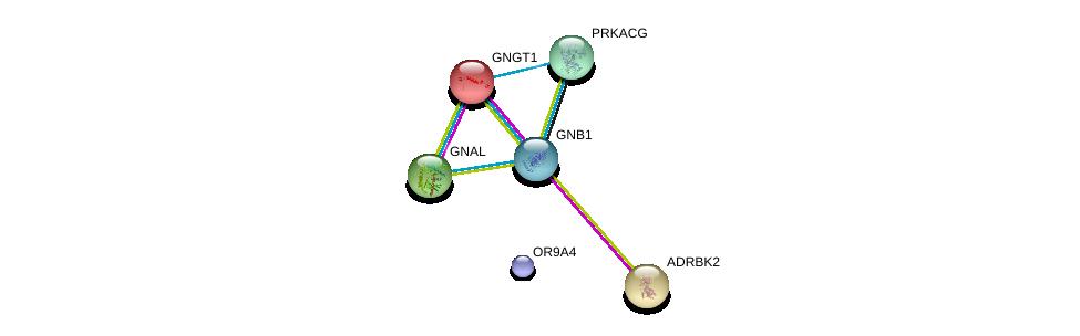 http://string-db.org/version_10/api/image/networkList?limit=0&targetmode=proteins&caller_identity=gene_cards&network_flavor=evidence&identifiers=9606.ENSP00000448789%0d%0a9606.ENSP00000248572%0d%0a9606.ENSP00000367869%0d%0a9606.ENSP00000334051%0d%0a9606.ENSP00000317578%0d%0a9606.ENSP00000366488%0d%0a
