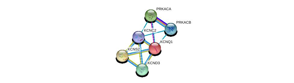 http://string-db.org/version_10/api/image/networkList?limit=0&targetmode=proteins&caller_identity=gene_cards&network_flavor=evidence&identifiers=9606.ENSP00000449253%0d%0a9606.ENSP00000359719%0d%0a9606.ENSP00000319591%0d%0a9606.ENSP00000309591%0d%0a9606.ENSP00000287042%0d%0a9606.ENSP00000155840%0d%0a