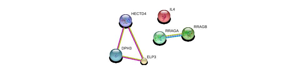 http://string-db.org/version_10/api/image/networkList?limit=0&targetmode=proteins&caller_identity=gene_cards&network_flavor=evidence&identifiers=9606.ENSP00000449784%0d%0a9606.ENSP00000256398%0d%0a9606.ENSP00000419599%0d%0a9606.ENSP00000231449%0d%0a9606.ENSP00000262850%0d%0a9606.ENSP00000369899%0d%0a