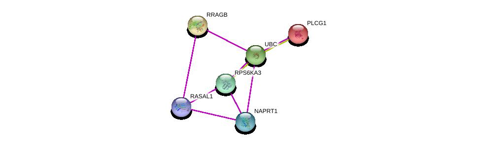 http://string-db.org/version_10/api/image/networkList?limit=0&targetmode=proteins&caller_identity=gene_cards&network_flavor=evidence&identifiers=9606.ENSP00000450244%0d%0a9606.ENSP00000368884%0d%0a9606.ENSP00000401508%0d%0a9606.ENSP00000262850%0d%0a9606.ENSP00000344818%0d%0a9606.ENSP00000244007%0d%0a
