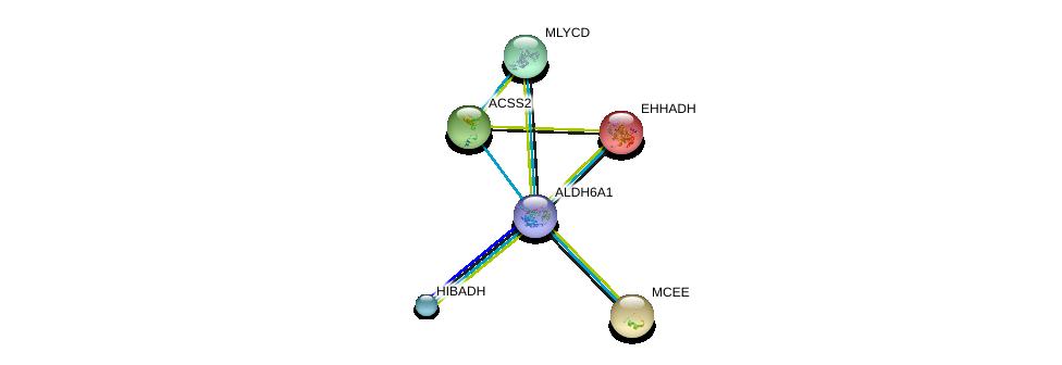 http://string-db.org/version_10/api/image/networkList?limit=0&targetmode=proteins&caller_identity=gene_cards&network_flavor=evidence&identifiers=9606.ENSP00000450436%0d%0a9606.ENSP00000231887%0d%0a9606.ENSP00000244217%0d%0a9606.ENSP00000253382%0d%0a9606.ENSP00000262430%0d%0a9606.ENSP00000265395%0d%0a