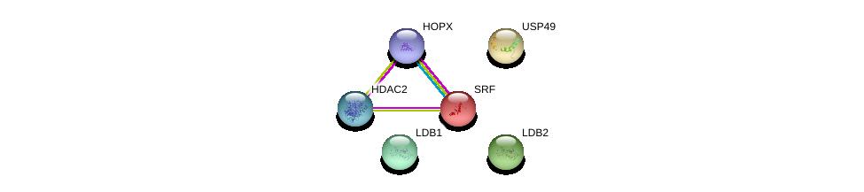 http://string-db.org/version_10/api/image/networkList?limit=0&targetmode=proteins&caller_identity=gene_cards&network_flavor=evidence&identifiers=9606.ENSP00000450527%0d%0a9606.ENSP00000306772%0d%0a9606.ENSP00000392466%0d%0a9606.ENSP00000297229%0d%0a9606.ENSP00000265354%0d%0a9606.ENSP00000430432%0d%0a