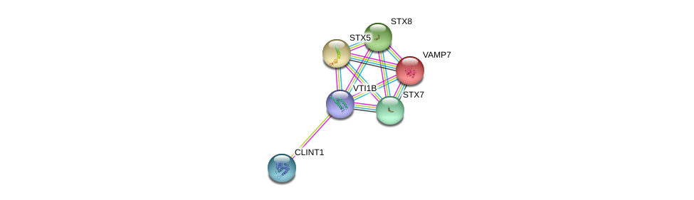 http://string-db.org/version_10/api/image/networkList?limit=0&targetmode=proteins&caller_identity=gene_cards&network_flavor=evidence&identifiers=9606.ENSP00000450731%0d%0a9606.ENSP00000305255%0d%0a9606.ENSP00000356918%0d%0a9606.ENSP00000429824%0d%0a9606.ENSP00000294179%0d%0a9606.ENSP00000262640%0d%0a