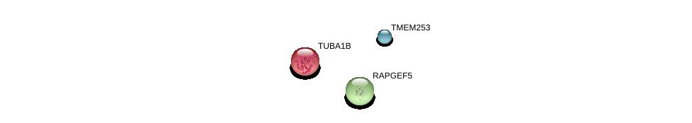 http://string-db.org/version_10/api/image/networkList?limit=0&targetmode=proteins&caller_identity=gene_cards&network_flavor=evidence&identifiers=9606.ENSP00000451229%0d%0a9606.ENSP00000343656%0d%0a9606.ENSP00000336799%0d%0a
