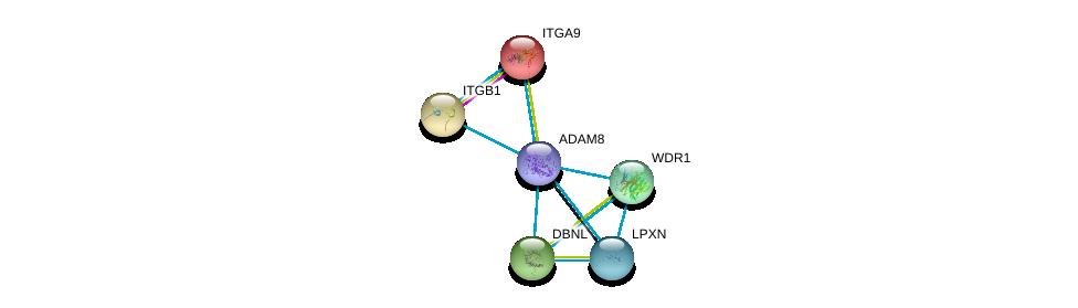 http://string-db.org/version_10/api/image/networkList?limit=0&targetmode=proteins&caller_identity=gene_cards&network_flavor=evidence&identifiers=9606.ENSP00000453302%0d%0a9606.ENSP00000303351%0d%0a9606.ENSP00000264741%0d%0a9606.ENSP00000431284%0d%0a9606.ENSP00000427687%0d%0a9606.ENSP00000417653%0d%0a