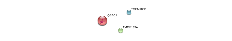 http://string-db.org/version_10/api/image/networkList?limit=0&targetmode=proteins&caller_identity=gene_cards&network_flavor=evidence&identifiers=9606.ENSP00000453399%0d%0a9606.ENSP00000359449%0d%0a9606.ENSP00000273221%0d%0a