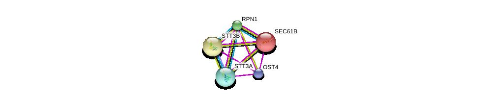 http://string-db.org/version_10/api/image/networkList?limit=0&targetmode=proteins&caller_identity=gene_cards&network_flavor=evidence&identifiers=9606.ENSP00000454411%0d%0a9606.ENSP00000376472%0d%0a9606.ENSP00000295770%0d%0a9606.ENSP00000223641%0d%0a9606.ENSP00000296255%0d%0a