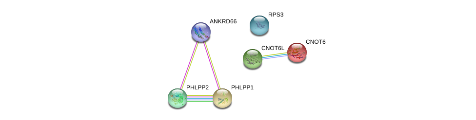 http://string-db.org/version_10/api/image/networkList?limit=0&targetmode=proteins&caller_identity=gene_cards&network_flavor=evidence&identifiers=9606.ENSP00000454770%0d%0a9606.ENSP00000262719%0d%0a9606.ENSP00000348611%0d%0a9606.ENSP00000433821%0d%0a9606.ENSP00000261951%0d%0a9606.ENSP00000264903%0d%0a