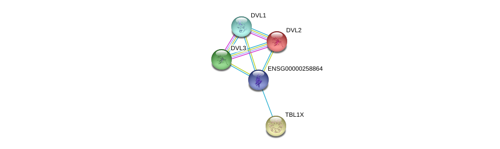 http://string-db.org/version_10/api/image/networkList?limit=0&targetmode=proteins&caller_identity=gene_cards&network_flavor=evidence&identifiers=9606.ENSP00000454861%0d%0a9606.ENSP00000005340%0d%0a9606.ENSP00000368169%0d%0a9606.ENSP00000368169%0d%0a9606.ENSP00000316054%0d%0a9606.ENSP00000217964%0d%0a