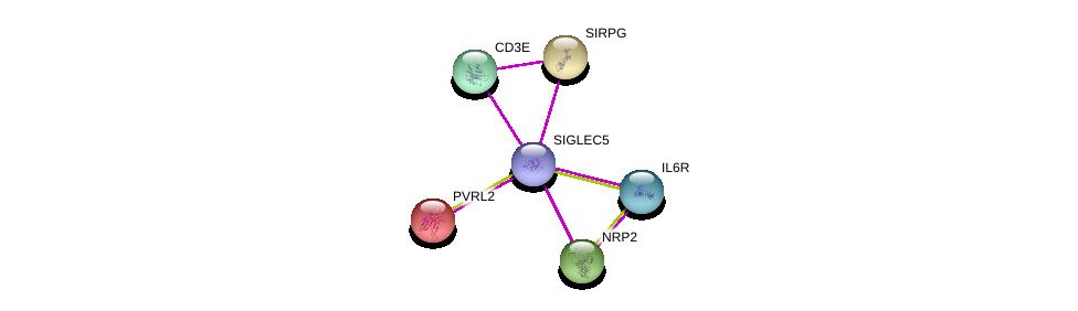 http://string-db.org/version_10/api/image/networkList?limit=0&targetmode=proteins&caller_identity=gene_cards&network_flavor=evidence&identifiers=9606.ENSP00000455510%0d%0a9606.ENSP00000357470%0d%0a9606.ENSP00000353582%0d%0a9606.ENSP00000305529%0d%0a9606.ENSP00000354566%0d%0a9606.ENSP00000252483%0d%0a
