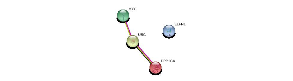 http://string-db.org/version_10/api/image/networkList?limit=0&targetmode=proteins&caller_identity=gene_cards&network_flavor=evidence&identifiers=9606.ENSP00000456548%0d%0a9606.ENSP00000326031%0d%0a9606.ENSP00000344818%0d%0a9606.ENSP00000367207%0d%0a