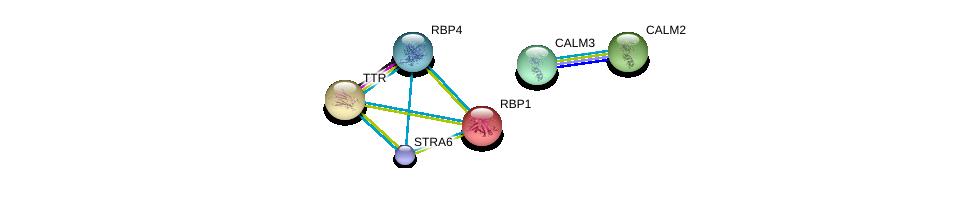 http://string-db.org/version_10/api/image/networkList?limit=0&targetmode=proteins&caller_identity=gene_cards&network_flavor=evidence&identifiers=9606.ENSP00000456609%0d%0a9606.ENSP00000232219%0d%0a9606.ENSP00000360519%0d%0a9606.ENSP00000237014%0d%0a9606.ENSP00000291295%0d%0a9606.ENSP00000272298%0d%0a