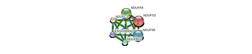 http://string-db.org/version_10/api/image/networkList?limit=0&targetmode=proteins&caller_identity=gene_cards&network_flavor=evidence&identifiers=9606.ENSP00000456832%0d%0a9606.ENSP00000263774%0d%0a9606.ENSP00000265500%0d%0a9606.ENSP00000266544%0d%0a9606.ENSP00000268668%0d%0a9606.ENSP00000274137%0d%0a