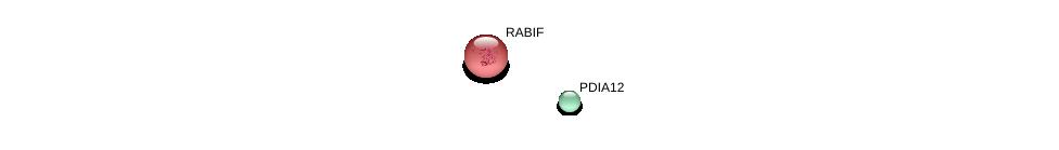 http://string-db.org/version_10/api/image/networkList?limit=0&targetmode=proteins&caller_identity=gene_cards&network_flavor=evidence&identifiers=9606.ENSP00000456881%0d%0a9606.ENSP00000356231%0d%0a