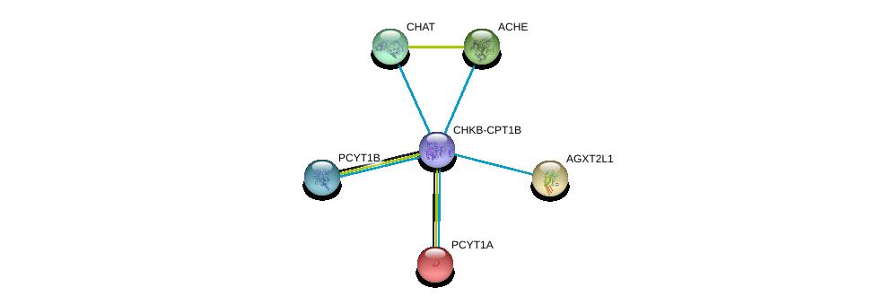 http://string-db.org/version_10/api/image/networkList?limit=0&targetmode=proteins&caller_identity=gene_cards&network_flavor=evidence&identifiers=9606.ENSP00000457031%0d%0a9606.ENSP00000292823%0d%0a9606.ENSP00000296486%0d%0a9606.ENSP00000303211%0d%0a9606.ENSP00000337103%0d%0a9606.ENSP00000368439%0d%0a