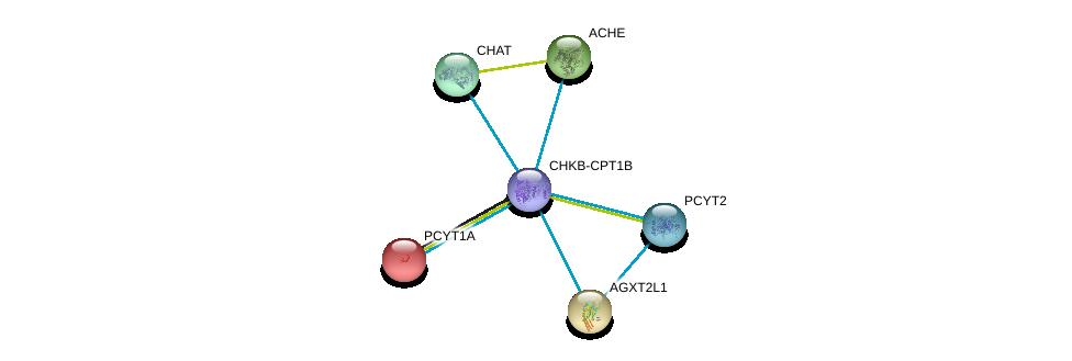 http://string-db.org/version_10/api/image/networkList?limit=0&targetmode=proteins&caller_identity=gene_cards&network_flavor=evidence&identifiers=9606.ENSP00000457031%0d%0a9606.ENSP00000442050%0d%0a9606.ENSP00000337103%0d%0a9606.ENSP00000303211%0d%0a9606.ENSP00000292823%0d%0a9606.ENSP00000296486%0d%0a