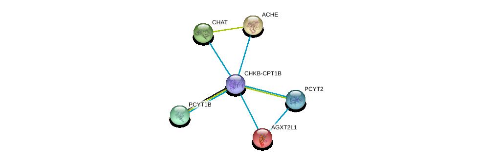 http://string-db.org/version_10/api/image/networkList?limit=0&targetmode=proteins&caller_identity=gene_cards&network_flavor=evidence&identifiers=9606.ENSP00000457031%0d%0a9606.ENSP00000442050%0d%0a9606.ENSP00000337103%0d%0a9606.ENSP00000303211%0d%0a9606.ENSP00000368439%0d%0a9606.ENSP00000296486%0d%0a