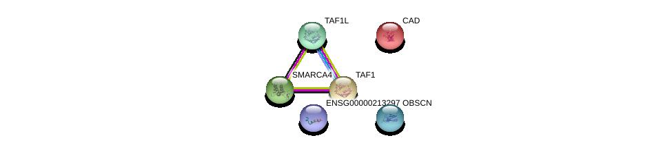 http://string-db.org/version_10/api/image/networkList?limit=0&targetmode=proteins&caller_identity=gene_cards&network_flavor=evidence&identifiers=9606.ENSP00000457423%0d%0a9606.ENSP00000264705%0d%0a9606.ENSP00000455507%0d%0a9606.ENSP00000418379%0d%0a9606.ENSP00000276072%0d%0a9606.ENSP00000350720%0d%0a