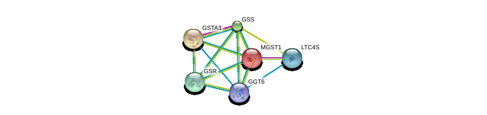 http://string-db.org/version_10/api/image/networkList?limit=0&targetmode=proteins&caller_identity=gene_cards&network_flavor=evidence&identifiers=9606.ENSP00000458307%0d%0a9606.ENSP00000292596%0d%0a9606.ENSP00000010404%0d%0a9606.ENSP00000211122%0d%0a9606.ENSP00000216951%0d%0a9606.ENSP00000221130%0d%0a