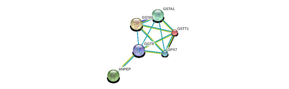 http://string-db.org/version_10/api/image/networkList?limit=0&targetmode=proteins&caller_identity=gene_cards&network_flavor=evidence&identifiers=9606.ENSP00000458307%0d%0a9606.ENSP00000300060%0d%0a9606.ENSP00000248935%0d%0a9606.ENSP00000354677%0d%0a9606.ENSP00000335620%0d%0a9606.ENSP00000284562%0d%0a