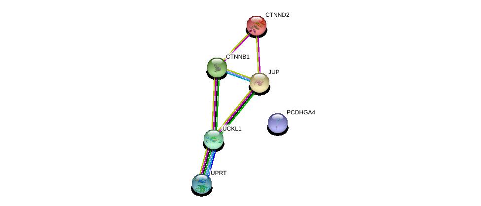 http://string-db.org/version_10/api/image/networkList?limit=0&targetmode=proteins&caller_identity=gene_cards&network_flavor=evidence&identifiers=9606.ENSP00000458570%0d%0a9606.ENSP00000311113%0d%0a9606.ENSP00000344456%0d%0a9606.ENSP00000346155%0d%0a9606.ENSP00000362481%0d%0a9606.ENSP00000307134%0d%0a