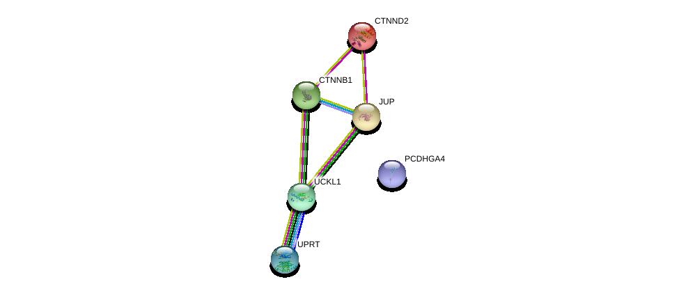 http://string-db.org/version_10/api/image/networkList?limit=0&targetmode=proteins&caller_identity=gene_cards&network_flavor=evidence&identifiers=9606.ENSP00000458570%0d%0a9606.ENSP00000346155%0d%0a9606.ENSP00000344456%0d%0a9606.ENSP00000311113%0d%0a9606.ENSP00000362481%0d%0a9606.ENSP00000307134%0d%0a