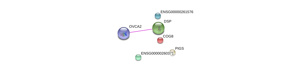 http://string-db.org/version_10/api/image/networkList?limit=0&targetmode=proteins&caller_identity=gene_cards&network_flavor=evidence&identifiers=9606.ENSP00000461388%0d%0a9606.ENSP00000369129%0d%0a9606.ENSP00000309430%0d%0a9606.ENSP00000457718%0d%0a9606.ENSP00000305459%0d%0a9606.ENSP00000454500%0d%0a