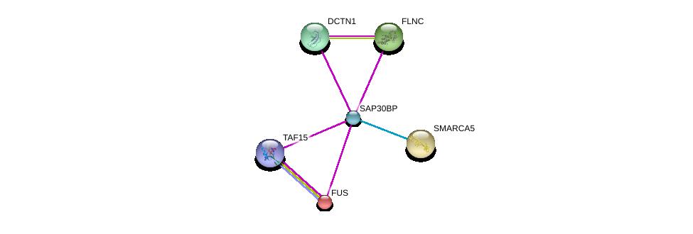 http://string-db.org/version_10/api/image/networkList?limit=0&targetmode=proteins&caller_identity=gene_cards&network_flavor=evidence&identifiers=9606.ENSP00000462116%0d%0a9606.ENSP00000327145%0d%0a9606.ENSP00000354791%0d%0a9606.ENSP00000466950%0d%0a9606.ENSP00000254108%0d%0a9606.ENSP00000283131%0d%0a