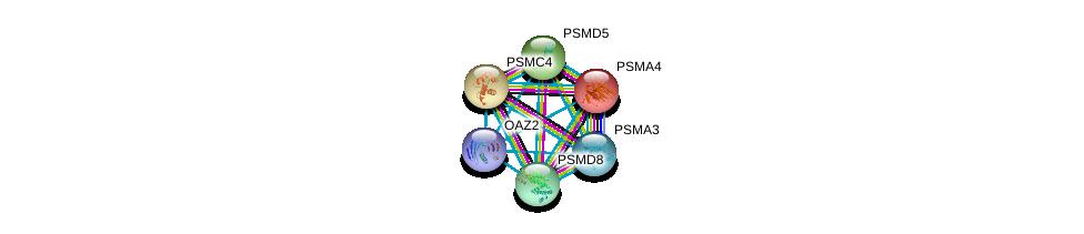 http://string-db.org/version_10/api/image/networkList?limit=0&targetmode=proteins&caller_identity=gene_cards&network_flavor=evidence&identifiers=9606.ENSP00000463013%0d%0a9606.ENSP00000044462%0d%0a9606.ENSP00000157812%0d%0a9606.ENSP00000210313%0d%0a9606.ENSP00000215071%0d%0a9606.ENSP00000216455%0d%0a