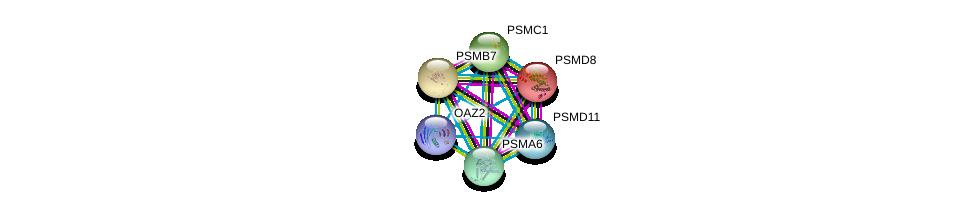 http://string-db.org/version_10/api/image/networkList?limit=0&targetmode=proteins&caller_identity=gene_cards&network_flavor=evidence&identifiers=9606.ENSP00000463013%0d%0a9606.ENSP00000215071%0d%0a9606.ENSP00000259457%0d%0a9606.ENSP00000261303%0d%0a9606.ENSP00000261479%0d%0a9606.ENSP00000261712%0d%0a