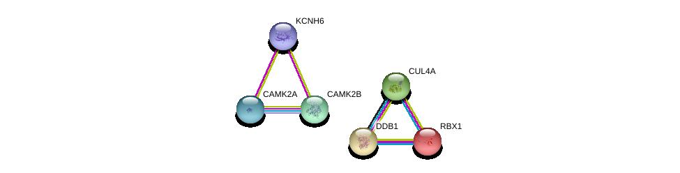 http://string-db.org/version_10/api/image/networkList?limit=0&targetmode=proteins&caller_identity=gene_cards&network_flavor=evidence&identifiers=9606.ENSP00000463533%0d%0a9606.ENSP00000301764%0d%0a9606.ENSP00000216225%0d%0a9606.ENSP00000364589%0d%0a9606.ENSP00000381412%0d%0a9606.ENSP00000379098%0d%0a