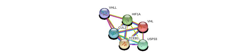 http://string-db.org/version_10/api/image/networkList?limit=0&targetmode=proteins&caller_identity=gene_cards&network_flavor=evidence&identifiers=9606.ENSP00000464258%0d%0a9606.ENSP00000444856%0d%0a9606.ENSP00000338018%0d%0a9606.ENSP00000284811%0d%0a9606.ENSP00000256474%0d%0a9606.ENSP00000350009%0d%0a