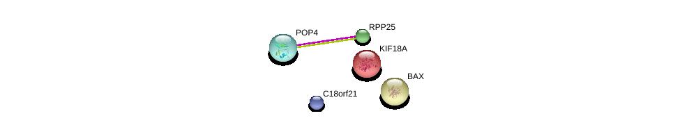 http://string-db.org/version_10/api/image/networkList?limit=0&targetmode=proteins&caller_identity=gene_cards&network_flavor=evidence&identifiers=9606.ENSP00000465517%0d%0a9606.ENSP00000465213%0d%0a9606.ENSP00000317691%0d%0a9606.ENSP00000263181%0d%0a9606.ENSP00000293288%0d%0a