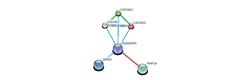 http://string-db.org/version_10/api/image/networkList?limit=0&targetmode=proteins&caller_identity=gene_cards&network_flavor=evidence&identifiers=9606.ENSP00000465742%0d%0a9606.ENSP00000358548%0d%0a9606.ENSP00000348786%0d%0a9606.ENSP00000005284%0d%0a9606.ENSP00000222212%0d%0a9606.ENSP00000226021%0d%0a
