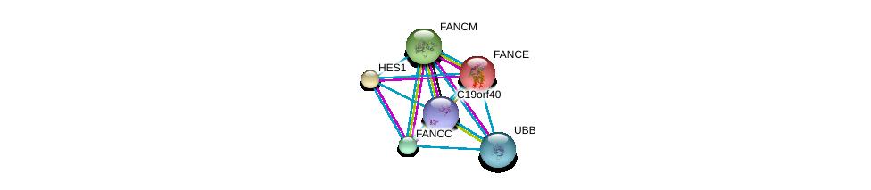 http://string-db.org/version_10/api/image/networkList?limit=0&targetmode=proteins&caller_identity=gene_cards&network_flavor=evidence&identifiers=9606.ENSP00000466121%0d%0a9606.ENSP00000267430%0d%0a9606.ENSP00000229769%0d%0a9606.ENSP00000232424%0d%0a9606.ENSP00000289081%0d%0a9606.ENSP00000304697%0d%0a