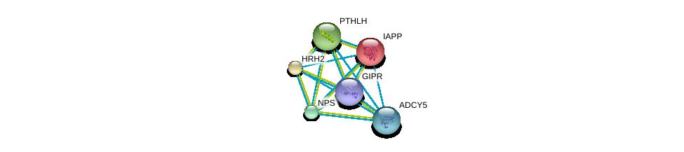 http://string-db.org/version_10/api/image/networkList?limit=0&targetmode=proteins&caller_identity=gene_cards&network_flavor=evidence&identifiers=9606.ENSP00000467494%0d%0a9606.ENSP00000419361%0d%0a9606.ENSP00000379213%0d%0a9606.ENSP00000366506%0d%0a9606.ENSP00000240652%0d%0a9606.ENSP00000381105%0d%0a