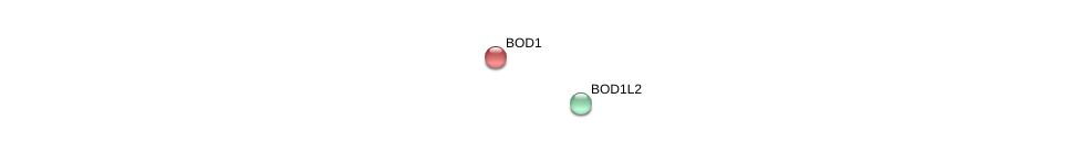 http://string-db.org/version_10/api/image/networkList?limit=0&targetmode=proteins&caller_identity=gene_cards&network_flavor=evidence&identifiers=9606.ENSP00000467843%0d%0a9606.ENSP00000309644%0d%0a